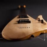 9-rapolo-grazio-darbas-lava-elektrines-gitaros-projektas-5399e28f4567a