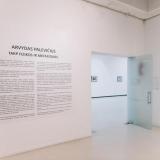 """Arvydo Palevičiaus parodoje """"Tarp fizikos ir metafizikos"""". Domo Rimeikos nuotr."""