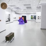 """Galerijos """"Meno parkas"""" parodos """"Ne muziejus..."""" ekspozicijos fragmentas. Nerijaus Jankausko nuotr."""