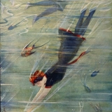 Life Magazine - Volume LVIII No 1502Deep Sea NumberA woman dives down to swim with the fish10 August 1911
