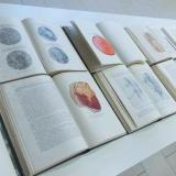 """Aurelija Maknytė. Žaizdų biblioteka. 1949–1955 / 2016 """"Sovietinės medicinos patirtis Didžiojo tėvynės karo 1941–1945 metais"""". 35 tomų (31 knyga) leidinys, leistas 1949–1955 metais rusų kalba, SSSR."""