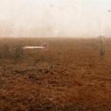 R. Treigys. Rudas peizažas. 1989.