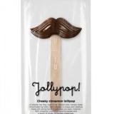 3-march_jollypop_cheeky-cinnamon-lollipop_package