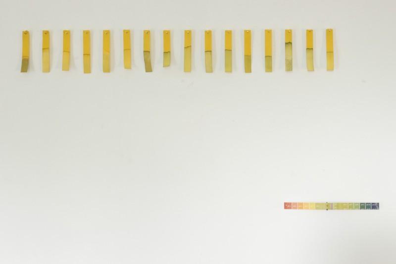 """Michael Robertson. š""""Santykiniam oro drėgnumui"""". Instaliacija. Mišri technika, universalus indikatorinis, popierius, skirtingi dydžiai, 2014"""