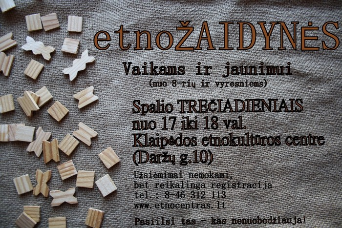 Etnozaidynes