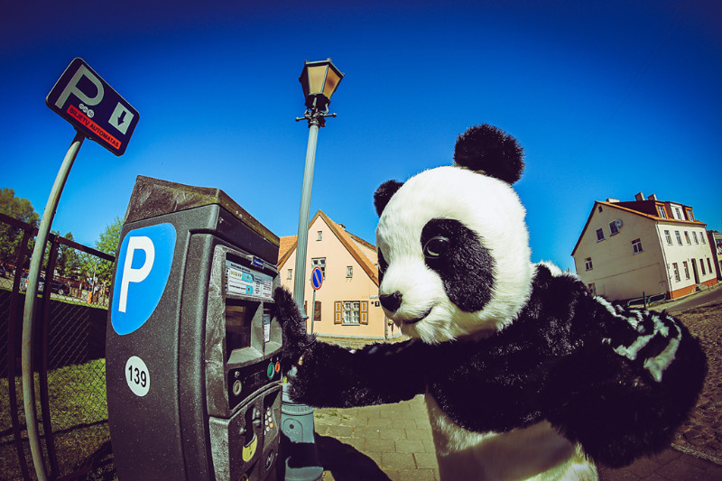 panda1_1