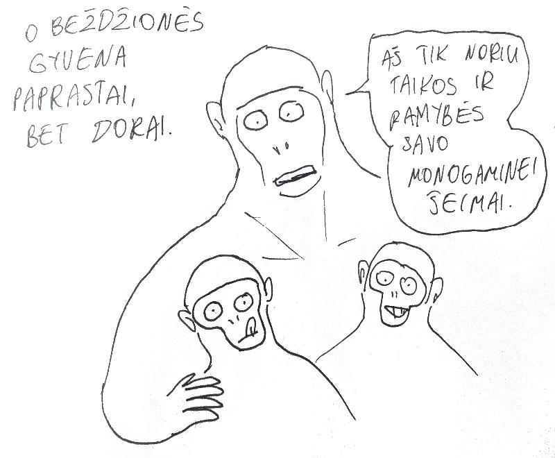 bezdziones7