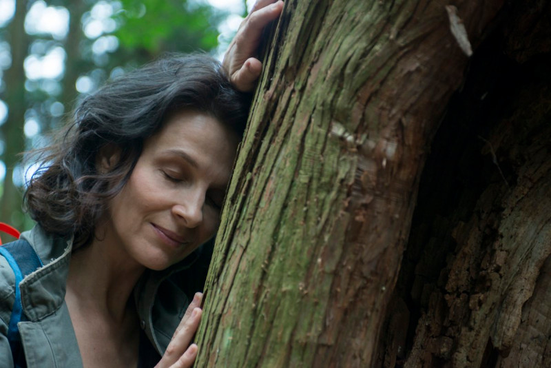 Juliette_Binoche_filme_Vizija