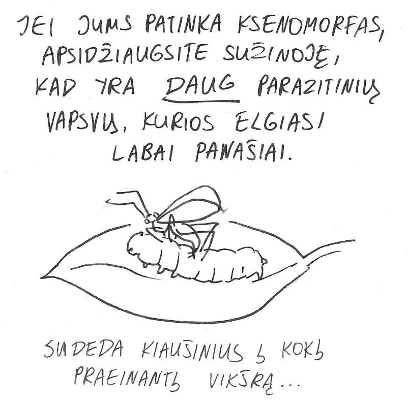 parazit12