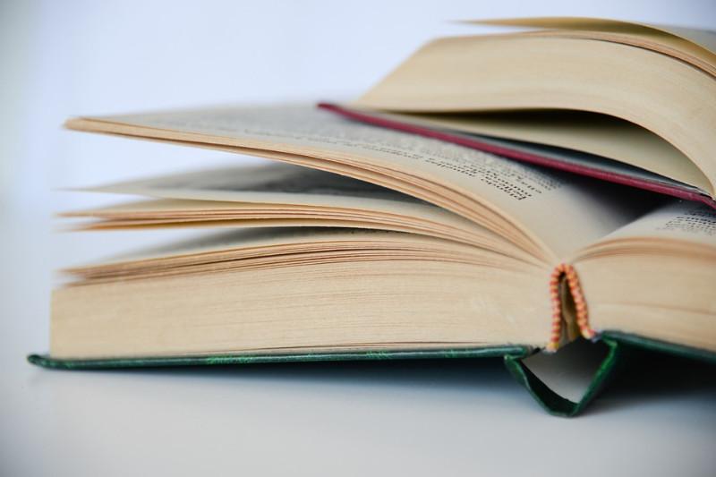knygos_pixabay_com