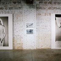 """Violetos Bubelytės paroda """"Savas kūnas"""" galerijoje """"Ya"""". 2020 m. Organizatorių nuotr."""