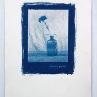 """Iš ciklo """"Žydroji nuotaika"""" (2012). Cianotipija"""