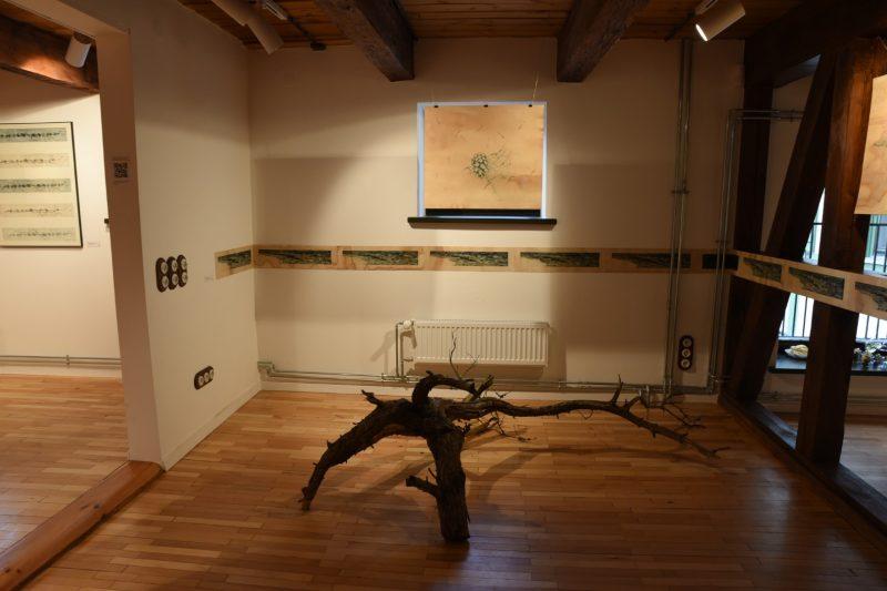 """Tomos Šlimaitės parodos """"Amžina kaita"""" ekspozicijos fragmentas. Ingridos Mockutės-Pocienės nuotr."""