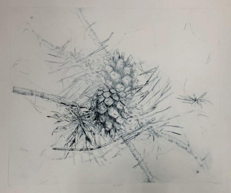 Toma Šlimaitė. Vėjo nugairinti Nr. 2. 2020, sausoji adata, 50 x 60 cm