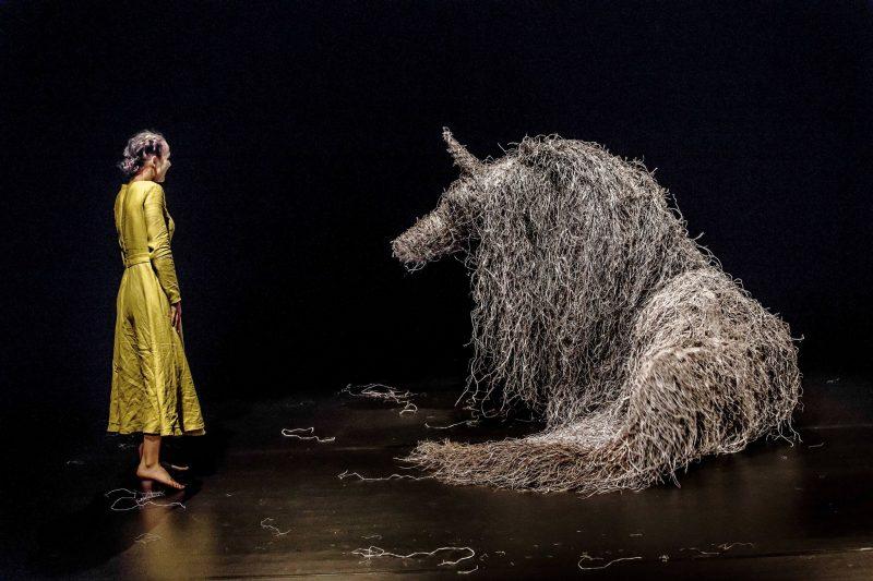 "Balstogės lėlių teatro spektaklis ""Virginia Wolf"". Krzysztof Bielinski nuotr."