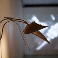 Edmundas Frėjus. Nusikaldinti sparnai. Kalta geležis, 60x80 cm, 2009 m. Manto Bartaševičiaus nuotr.