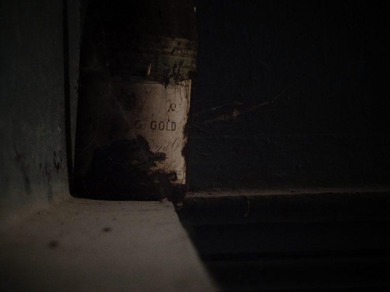 Remigijaus Treigio nuotrauka